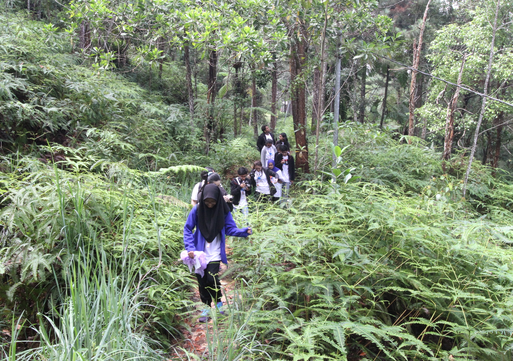 We like to take the BRATs out of their comfort zones, so we took them on a quest to find pitcher plants and gibbons in Genting's mobile tech-enabled forest.
